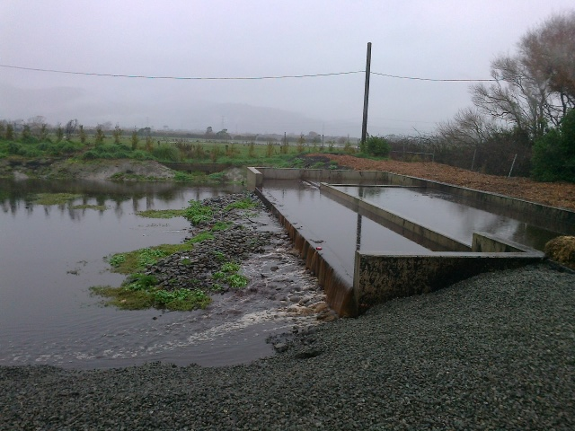 Living Earth storm-water trap, 16 June 2013